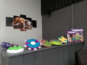 Hondendagopvang speelgoed